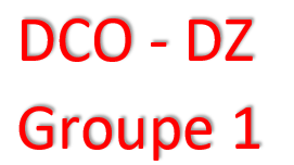 GROUPE 1 - FORMATION DCO/DZ - AGENT DU CHANGEMENT